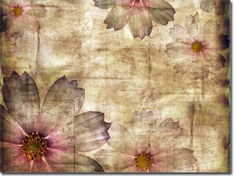 Fenster Sichtschutzfolie Blumen by Fensterfolie Vintage Blumen
