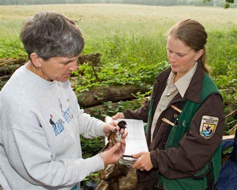 Free picture: biologist, work, bird, banding