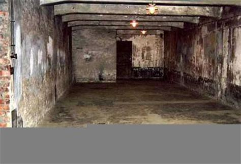 les chambre a gaz chambre à gaz la seconde guerre mondial
