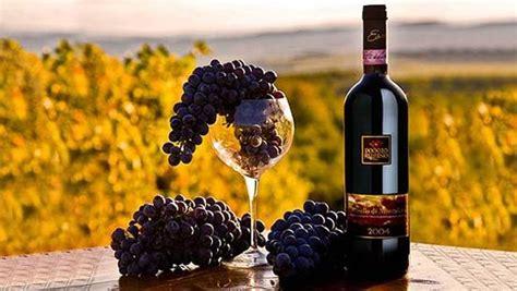 Best Italian Wines Undiscovered Italian Wine