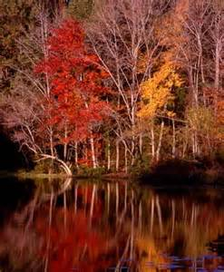 Texas State Parks Fall Foliage