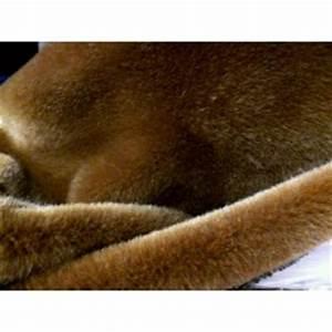 Fausse Fourrure Tissu : tissu fausse fourrure superieur synth tique poils courts ~ Teatrodelosmanantiales.com Idées de Décoration