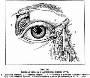 Внутричерепное давление от остеохондроза