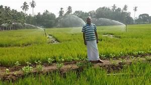Ravi1 - Global Farmer Network™