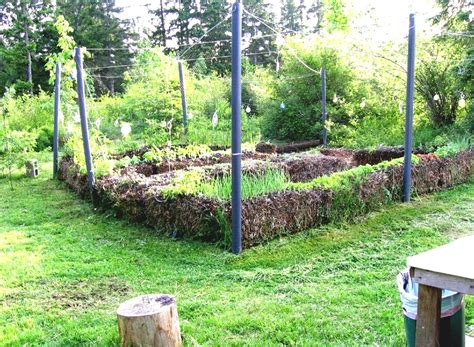 country vegetable garden ideas with gravels and colorful