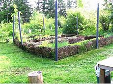 Vegetable Garden Designs And Ideas