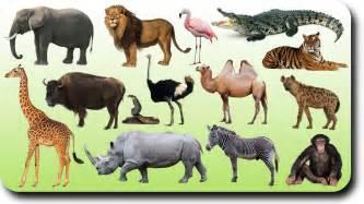 Christmas Tree Name In Hindi by Segundociclo 3 4 Animal World