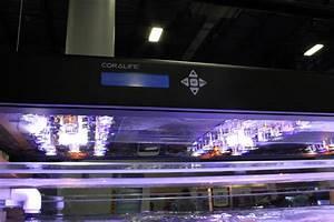 Coralife Aqualight Led Aquarium Reef Lighting Coralife Unveils New Led Aqualight Aquanerd