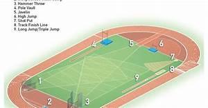 Track  U0026 Field Dimensions