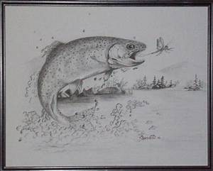cutthroat trout drawing - Google Search | Sketch Me Later ...
