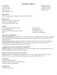 Student Internship Resume Sample