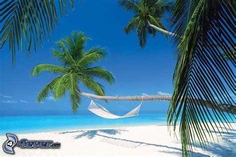 amaca sul mare maldive