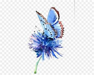Butterfly Painting Blue Flower Drawing Hand Painted