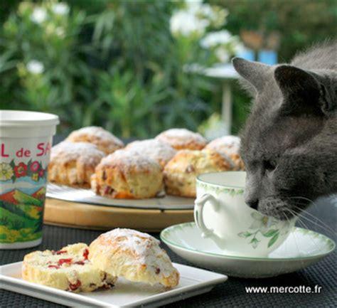 cuisine irlande scones aux cranberries retour d irlande blogs de cuisine