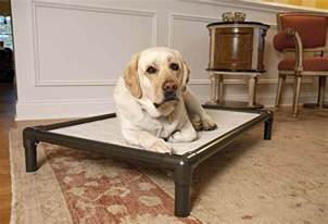 K9 Ballistics Dog Bed by 5 Really Indestructible Dog Beds The Kong Dog Bed