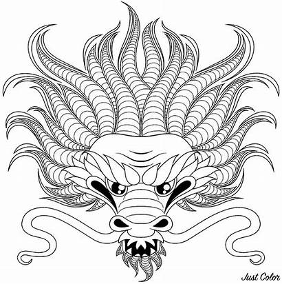 Dragon Head Coloring Dragons Pages Adult
