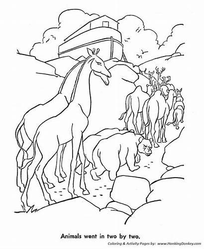 Coloring Pages Noah Bible Story Ark Characters