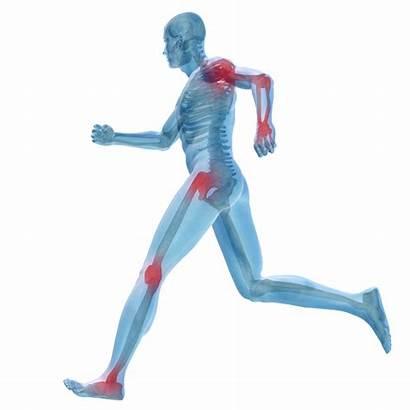 Sports Injuries Injury Pain Sport Help Patient