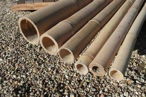 Riciclo creativo: utilizzare canne di bambù per il vostro giardino Paperblog