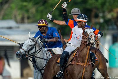 maestros media  polo groove continues unabated