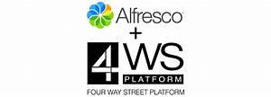 rapid development applied to alfresco document management With alfresco document management system