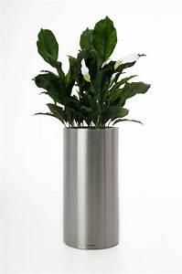 Pflanzkübel 70 Cm Durchmesser : pflanzk bel blumenk bel estra aus edelstahl 70 cm hoch geb rstet ~ Orissabook.com Haus und Dekorationen