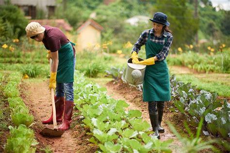 เกษตรกรมีเฮ! กระทรวงเกษตรฯ เตรียมจ่ายเงินเยียวยา รอบแรก 15 ...