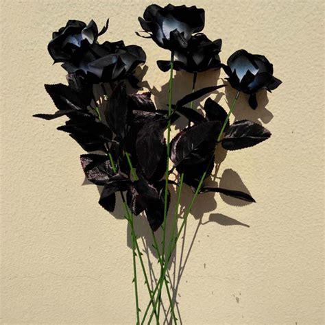 paling populer 12 bunga mawar aesthetic