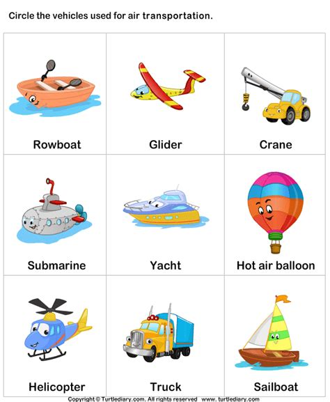 air transport turtlediary com projects with my