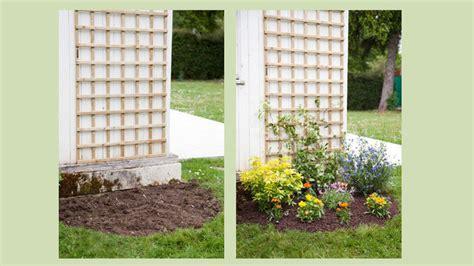comment cuisiner des aiguillettes de canard planter un buis dans un 28 images jardin alsace