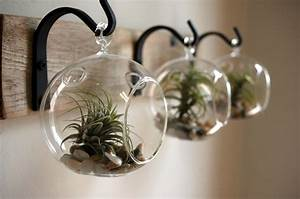 Glass globe wall decor mounted to wood board with wrought iron