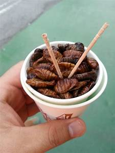 U0026quot Oh Yeah  Insects Are Full Of Proteins  U0026quot