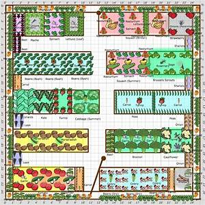 Gardening Tips Week 1  Planning Your Plot