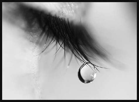 shed tear just to express shed a tear