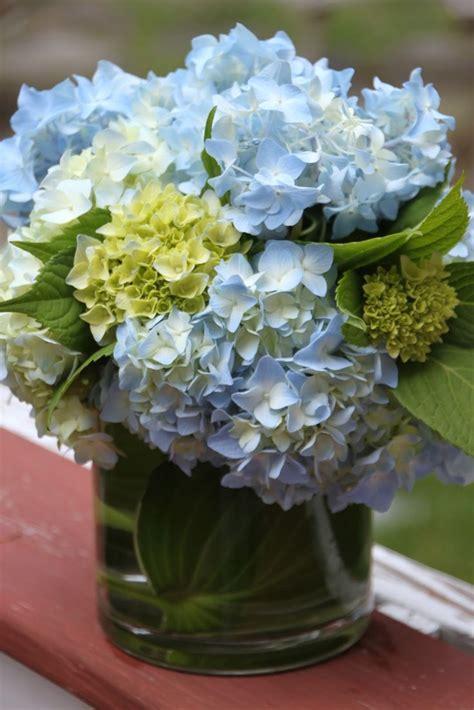 hydrangea flower arrangement ideas best 25 hydrangea arrangements ideas on pinterest white