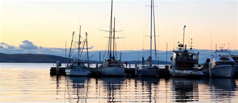 Boat Cruise Hobart by Hobart Sightseeing Lunch And Derwent River Cruises