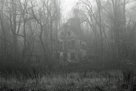 fog house 2 a bookworms haven