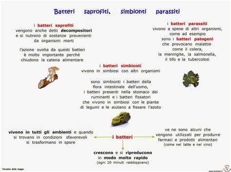 estrusione alimentare paradiso delle mappe batteri saprofiti simbionti e parassiti