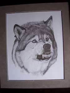 Snarling Wolf by LindseyTaylor on DeviantArt