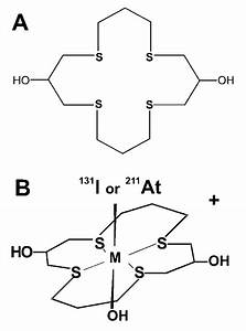 Structure Of  A  Macrocyclic Thioether Ligand