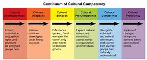 What is cultura... Cultural Competency