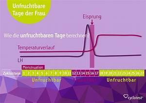 Zyklus Eisprung Berechnen : unfruchtbare tage am zyklusanfang nach dem eisprung ~ Themetempest.com Abrechnung