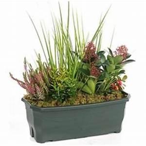 Fleur D Hiver Pour Jardinière : fleurs deuil plantes et arbustes rustiques pour jardins d ~ Dailycaller-alerts.com Idées de Décoration