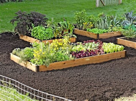 raised garden beds ideas inexpensive garden post
