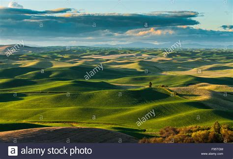 Scenic Rolling Hills In The Palouse Scenic Byway, Located