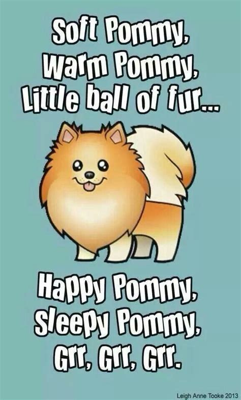 17 best images about pom poms on puppys pom