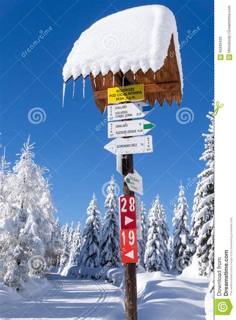 Direction Signs Alpine Hikes Alps Switzerland Stock Photo Hiking Sign Post Isolated On White Hiking Routes Signpost