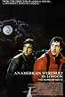 """Movie Review: """"An American Werewolf in London"""" – Classic ..."""