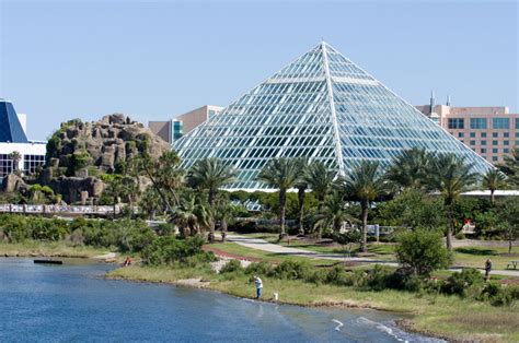 moody gardens galveston tx 11 things to do in galveston tour