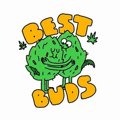 Buds Giphy Gifs